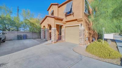 Tucson Single Family Home For Sale: 8047 E Cabinet Street