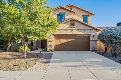 Sahuarita Single Family Home For Sale: 733 W Camino Curvitas