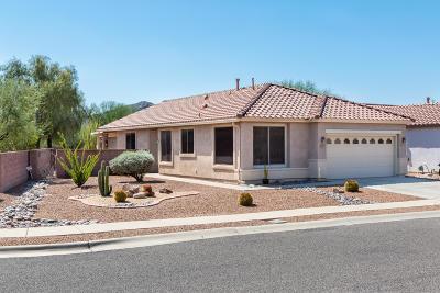 Tucson Single Family Home For Sale: 9935 N Scarlet Ranges Lane