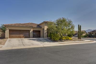 Marana Single Family Home For Sale: 4292 W Thunder Ranch Place