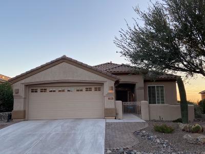 Marana Single Family Home Active Contingent: 13541 N Buckhorn Cholla Drive