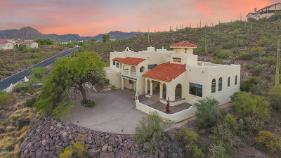 Tucson Single Family Home For Sale: 4650 W Crestview Circle
