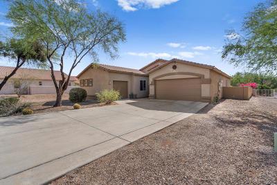 Tucson Single Family Home For Sale: 10702 E Placita Guajira