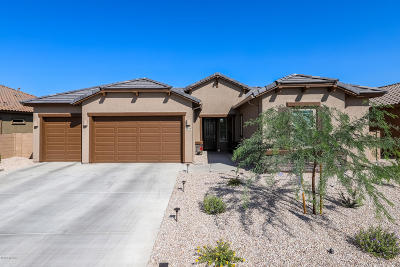 Tucson Single Family Home For Sale: 1610 W Hyperion Street