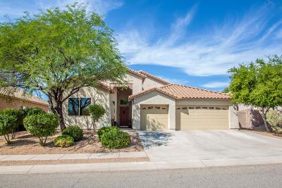 Tucson Single Family Home For Sale: 3434 S Desert Lantern Road