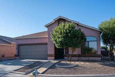 Tucson Single Family Home For Sale: 9952 E Via Del Pasto