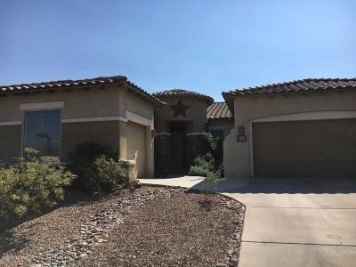 Sahuarita Single Family Home For Sale: 70 E Camino Tierra Montana