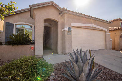 Oro Valley Single Family Home Active Contingent: 1005 W Leatherleaf Drive