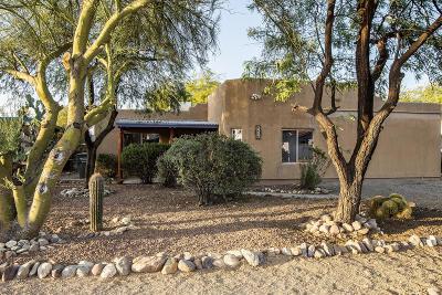 Tucson Single Family Home For Sale: 4059 E Santa Barbara Avenue