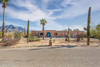Tucson Single Family Home For Sale: 7040 N Antonietta Drive