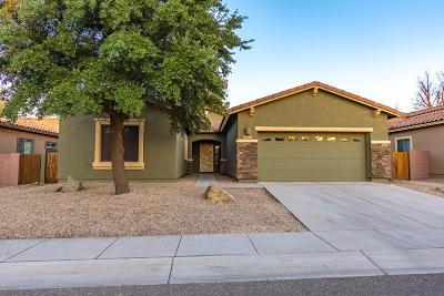 Sahuarita Single Family Home For Sale: 100 N Hayfield Draw Lane