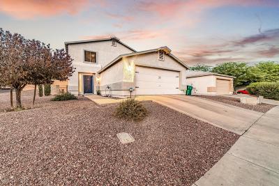 Tucson Single Family Home For Sale: 3152 W Alexanderwood Drive