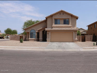 Tucson Single Family Home For Sale: 6587 S Willow Vista Drive
