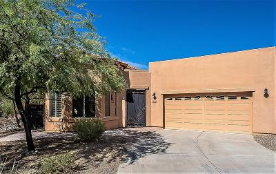 Tucson Single Family Home For Sale: 8133 N Night Pony Drive