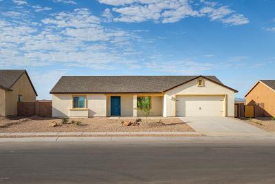 Tucson Single Family Home For Sale: 7001 S Draper Road