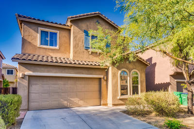 Sahuarita Single Family Home For Sale: 114 W Camino Cuesta Abajo