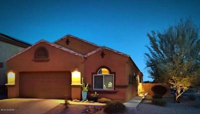 Tucson Single Family Home For Sale: 8742 N Norway Spruce Road