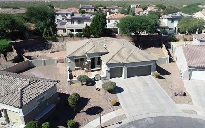 Sahuarita Single Family Home For Sale: 15036 S Placita Tierra Linda