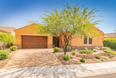 Marana Single Family Home For Sale: 12498 N Golden Mirror Drive