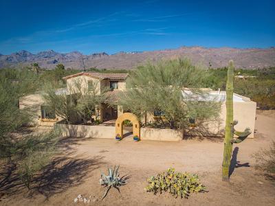 Tucson Single Family Home For Sale: 11205 E Stetson Place