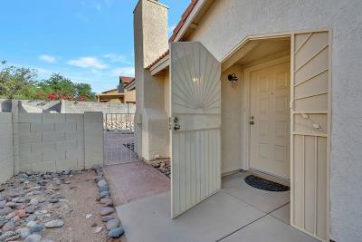 Tucson Single Family Home For Sale: 5134 Blackbird Drive