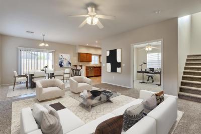 Sahuarita Single Family Home For Sale: 429 E Placita Rejilla