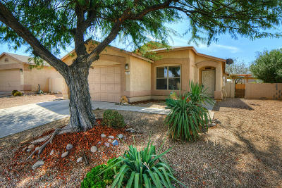 Tucson Single Family Home Active Contingent: 8802 E Green Branch Lane