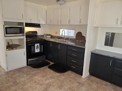 Tucson Single Family Home For Sale: 2966 W Palmyra Street
