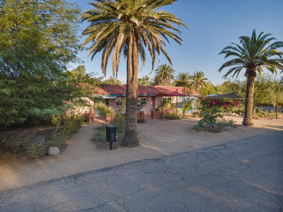 Tucson Single Family Home For Sale: 175 S Calle Contento