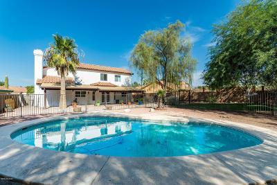 Tucson Single Family Home For Sale: 4501 W Plantation Street