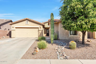 Tucson Single Family Home For Sale: 7494 W Crimson Sky Drive