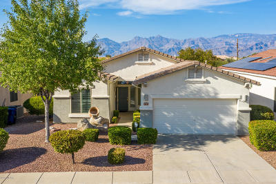 Tucson Single Family Home For Sale: 1272 S Desert Vista Drive