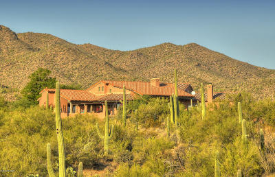 Tucson Single Family Home For Sale: 4225 N Broken Springs Trail