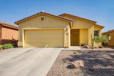 Tucson Single Family Home For Sale: 7922 N Chainfruit Cholla Drive