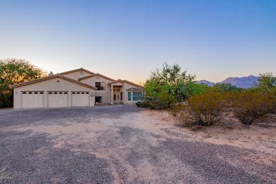 Tucson Single Family Home For Sale: 3255 N Cottontail Circle