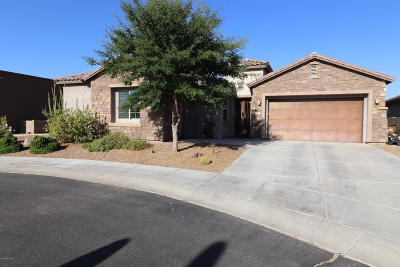 Marana Single Family Home Active Contingent: 12465 N Golden Mirror Drive