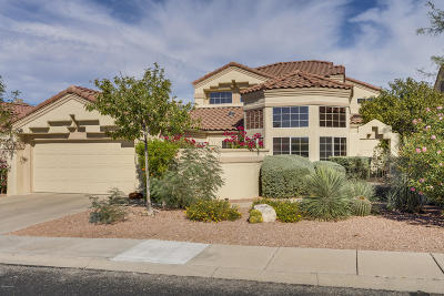 Oro Valley Single Family Home For Sale: 9966 N Bighorn Butte Drive