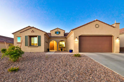 Marana Single Family Home For Sale: 7020 W Cliff Spring Trail