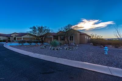 Sahuarita Single Family Home For Sale: 1452 E Walker Springs Place