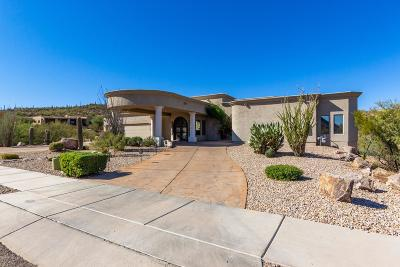 Tucson Single Family Home Active Contingent: 2082 S Starr Sky Drive