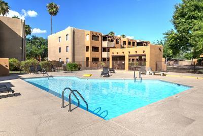 Tucson Condo Active Contingent: 1810 E Blacklidge Drive #220
