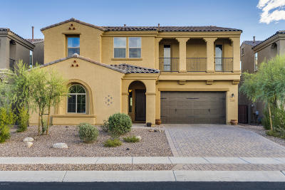 Oro Valley Single Family Home For Sale: 1029 W Desert Firetail Lane