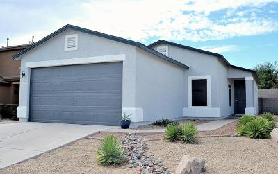 Sahuarita Single Family Home Active Contingent: 18744 S Via Santa Bonita