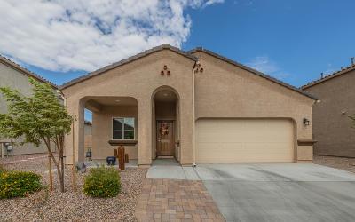 Marana Single Family Home Active Contingent: 9128 W Blue Saguaro Street
