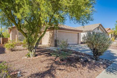 Marana Single Family Home Active Contingent: 12719 N Blue Sage Drive