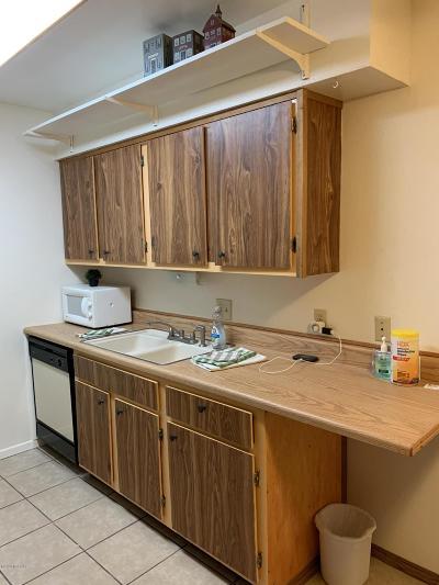 Tucson Condo For Sale: 451 W Yucca Court #213