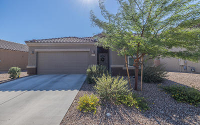 Vail Single Family Home Active Contingent: 12066 E Domnitch Drive