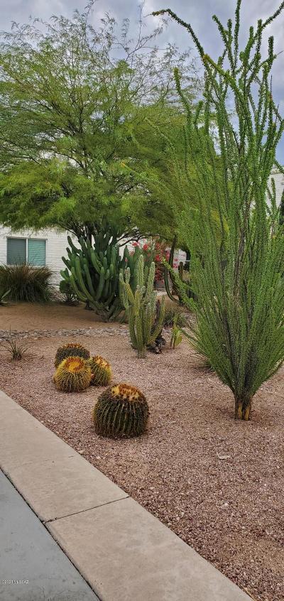 Tucson Condo For Sale: 8450 E Old Spanish Trail #244