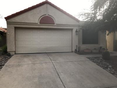 Oro Valley Single Family Home For Sale: 260 E Belcourte Place