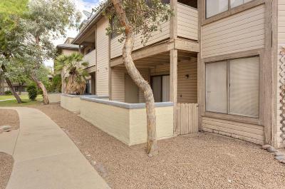 Tucson Condo For Sale: 1668 W Park Wood Lane #162